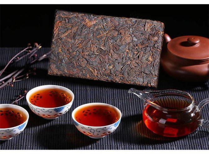 Чай Пуэр – полезные свойства и противопоказания